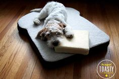 Picturing my dogs on this... hilarious! The ULTIMATE Pet Gift Guide #refinery29