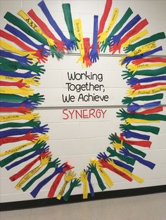 Synergize TLIM Habit 6 Everyone has Genius!!