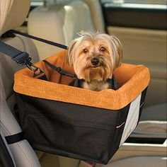 Give Fido the best seat in the car (not your lap) whenever he comes with you for a ride with the Skybox Booster Seat from Kurgo®. Not only will you pet sit with a great vantage point, he'll also be safely enjoying the trip in comfort and style.