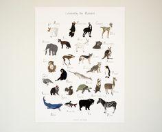 Celebrate the majesty of wildlife and [ital] teach your little one their ABCs with this beautifully illustrated print.
