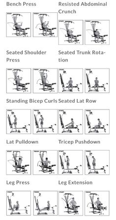123 best bowflex workout images in 2020  workout gym