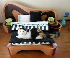 Cat bedroom.. except a dog one for toto