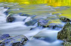 Argen River Photograph by Silke Magino