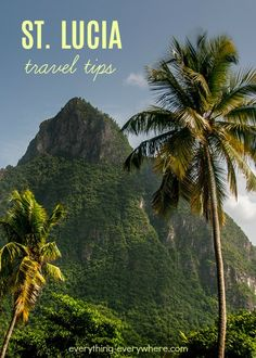 The beaches, mountains and exotic plant species… these things come to mind upon the mention of St. Lucia. While these hold true for St. Lucia, there is a lot more to this island nation than meets the eye. Plan your trip to this beautiful island with these useful tips. Travel Guides, Travel Tips, Travel Cot, Travel Goals, Travel Photos, Places To Travel, Places To Go, Travel Destinations, Caribbean Vacations