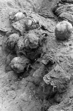 Heads of murdered Polish officers laying in layers, showing a structure of the grave.