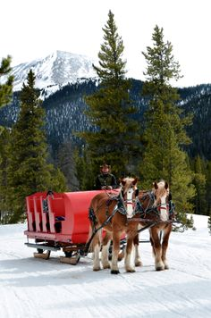 Winter Sleigh Rides Breckenridge Colorado                                (Wish I lived near! Would love to have a sleigh ride Dream )