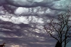 Undulatus Asperatus Cloud  This surreal looking cloud is a new discovery, the first since 1951! This has been put forward for official classification by the founder of the Cloud Appreciation Society, Gavin Pretor-Pinney. It looks scary, but these clouds generally follow after a storm rather than become one. The wave affect comes from turbulent differing air masses pushing cloud into shapes like rough waves on the sea. I have been lucky enough to see one of these,