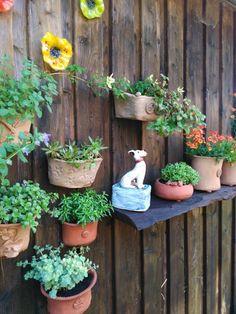Blumenarragement für die Wand