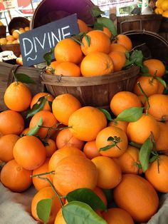 My favorite thing in the morning is to squeeze out oranges and make fresh orange juice 🤗😋🍊 Fruit And Veg, Fruits And Vegetables, Fresh Fruit, Raw Vegan Recipes, Vegan Food, Bountiful Harvest, Fruit Stands, Orange Aesthetic, Delicious Fruit