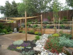 drought tolerant plant landscape | drought tolerant landscape consists of plants that require very ...