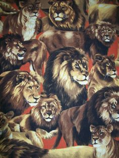 Hey, I found this really awesome Etsy listing at https://www.etsy.com/listing/183597093/cecil-the-lion-fabric-sold-per-yard.  CECIL THE LION R.I.P.