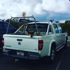 Saw this guy today in the back of a ute waiting for his Dad. Do you travel with animals and if so what kind? Waiting For Him, Traveling By Yourself, Dads, Magazine, Animals, Instagram, Animaux, Fathers, Animal