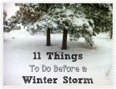 11 Things To Do Before a Winter Storm. We dont have those here in LC but you never know