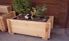 truhlíky na zahradu - Hledat Googlem