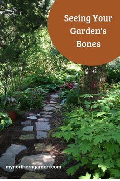 Every garden has bones -- the unchangeable elements that give it shape and structure. Can you see the bones of your garden? Design Basics, Stepping Stones, Bones, Garden Design, Design Inspiration, Backyard, Shape, Canning, Outdoor Decor