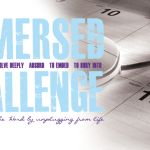 Immersed Challenge - More to Be