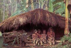Papue New Guinea Postcards 3 -Papua New Guinea Highlands family