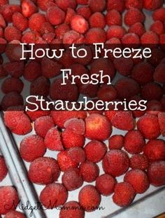 to freeze strawberries. Get those strawberries while they are cheap and in season and then freeze them for having them all year long Freezing Strawberries, Freezing Fruit, Freezing Vegetables, Frozen Vegetables, Frozen Strawberries, How To Preserve Strawberries, Fresh Strawberry Recipes, Fruit Recipes, Fresh Fruit