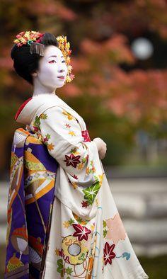 Maiko Mamesumi-san in beautiful maple leaves kimono. Japanese Geisha, Japanese Beauty, Japanese Kimono, Japanese Art, Asian Beauty, Geisha Art, Kimono Japan, Memoirs Of A Geisha, Zen Gardens