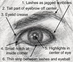 how to draw eyes, human eye