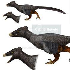 Indeterminate Velociraptorine Dromaeosaur by https://kana-hebi.deviantart.com on @DeviantArt
