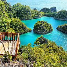 The striking colors of Raja Ampat, Indonesia. Photo courtesy of danflyingsolo on Instagram.