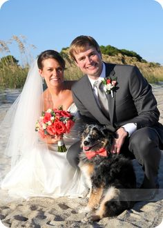 Pet Friendly Wedding | Toes and Paws in the Sand at Westin Hilton Head Island Resort & Spa