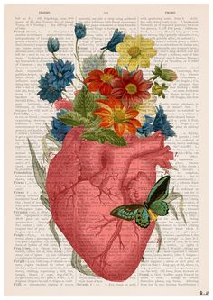 Winter Sale 10% off Pink Flowery Heart Human Anatomy by PRRINT