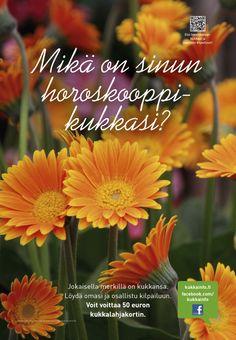 Kukkainfo.fi --> Mikä on sinun horoskooppikukkasi? 2012