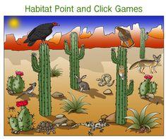 Animals of the Desert Bulletin Board Inspiration Stem Projects, School Projects, Art Projects, Science Activities For Kids, Preschool Themes, Desert Diorama, Desert Biome, 3rd Grade Art, Grade 3