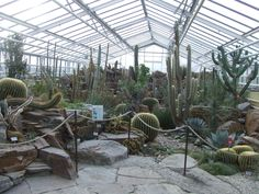Epic Book your tickets online for Botanischer Garten Muenchen Nymphenburg Munich See reviews