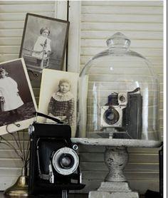 Display Vintage Cameras | via ryan n jenna fay