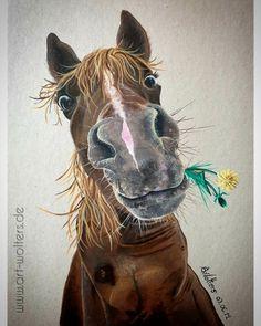 Horseart Acrylic paint on cardboard # Horse Drawings, Animal Drawings, Cute Drawings, Pencil Drawings, Funny Paintings, Animal Paintings, Acrylic Painting Animals, Horse Paintings, Pastel Paintings