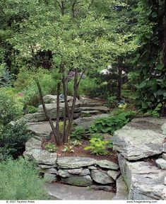 Flat Rocks bring Unique Style to your Garden