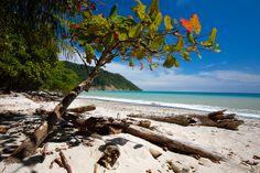 cabo blanco, costa rica's oldest nature preserve