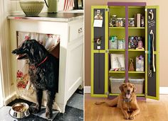 a great Pretty Fluffy blog post full of pet-friendly home ideas