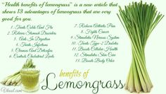 antioxidants advantages, understanding free radicals and how antioxidant can assist to maintain a great health. Antioxidant food for tip Lemongrass Oil, Lemongrass Essential Oil, Health And Wellbeing, Health Benefits, Oil Benefits, Health Tips, Lemon Grass Benefits, Advantages Of Lemon, Antioxidant Supplements