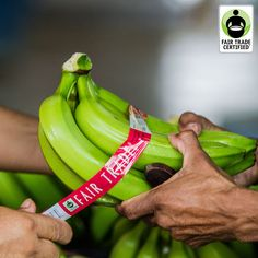 You don't need to buy more to support Fair Trade, just buy differently! Look for the Fair Trade Certified label when you shop!