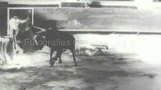 """Muerte de Joselito """"El Gallo"""""""