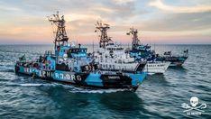 Vegan Non-Profit Sea Shepherd Shuts Down World's Largest Fishing Vessel Shark Conservation, Sport Fishing Boats, Sea Shepherd, Sea Dream, Fishing Vessel, Ocean Pollution, Whitewater Kayaking, Canoe Trip, Wildlife Photography