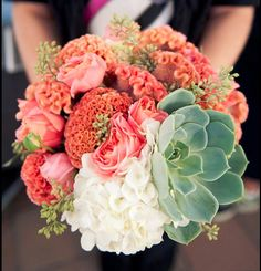 succulents and coral flowers