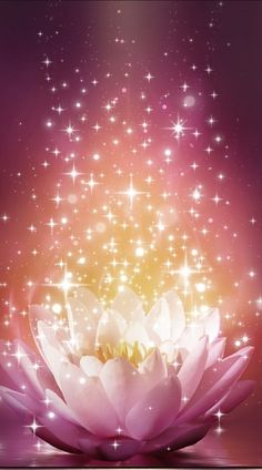 By Artist Unknown. By Artist Unknown. Lotus Flower Wallpaper, Wallpaper Nature Flowers, Flowery Wallpaper, Beautiful Flowers Wallpapers, Glitter Wallpaper, Galaxy Wallpaper, Cool Wallpaper, Cute Wallpapers, Beautiful Images