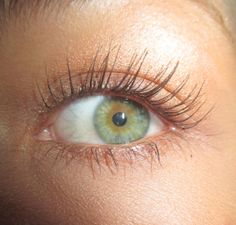 Goodbye harmful and expensive extensions 👋Hello Natural Lashes! Long, full, thick and overall beautiful lashes! Thanks to Stronglash! Use our code SUMMER for off our lash serum! Long Eyebrows, Long Lashes, How To Grow Eyelashes, Longer Eyelashes, Fake Eyelashes, Pretty Eyes, Beautiful Eyes, Beautiful Things, Aesthetic Eyes