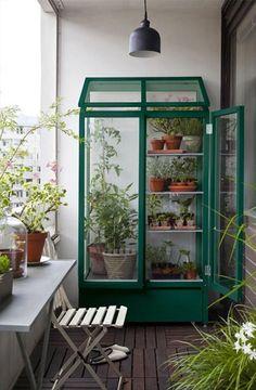 Comemorando a chegada da primavera, que tal trazer um pouco mais de verde para dentro da sua casa, apartamento ou escritório? Reunimos uma seleção de 20 espécies de plantas ideias para ambientes internos, com algumas dicas de cuidados para cada uma. Trazer a natureza para dentro de casa pode deixar