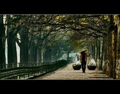 by minhduc.nguyen, via Kim Ma #hanoi #vietnam http://viaggi.asiatica.com/
