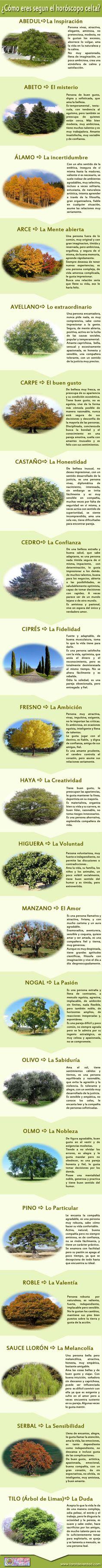 Horoscopo Celta - Los Árboles de los Druidas. Para ver qué árbol te corresponde, visita http://www.tarotdeverdad.com/horoscopo-celta.php y descúbrelo