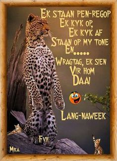 Happy Weekend, Long Weekend, Goeie Nag, Goeie More, Day Wishes, Strong Quotes, Afrikaans, Good Morning, Cards