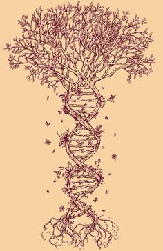 Tree DNA Tattoo | Rene Campbell  ...top it with brain structure? or would the whole 'tree' appearance be lost...