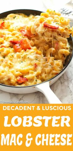 Lobster Mac and Cheese easy recipes baked best creamy macandcheese lobster 56787645290703928 Lobster Mac N Cheese Recipe, Seafood Mac And Cheese, Baked Mac And Cheese Recipe, Macaroni Cheese Recipes, Bake Mac And Cheese, Lobster Dishes, Seafood Dishes, Pasta Dishes, Seafood Recipes
