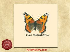 WWII - Holocaust Butterfly Individual Kit - - World History Projects
